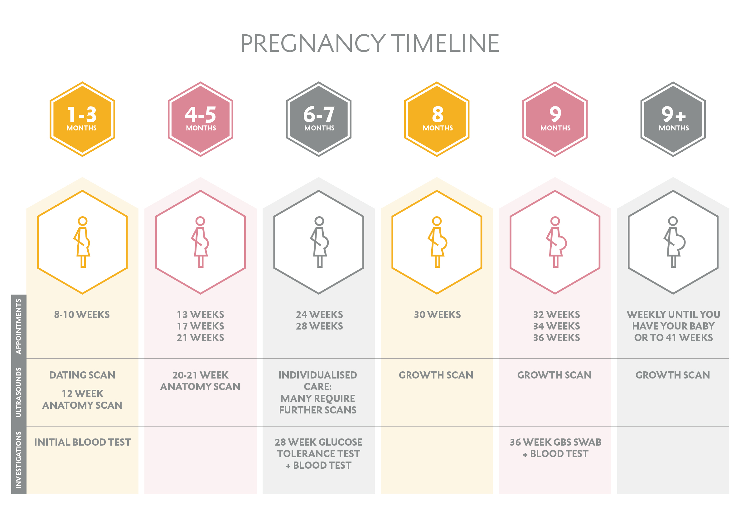 fionaBrownfoot-pregnancy-timeline